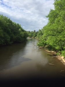 Neuse River Trail 1