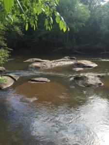 Neuse River Trail 2