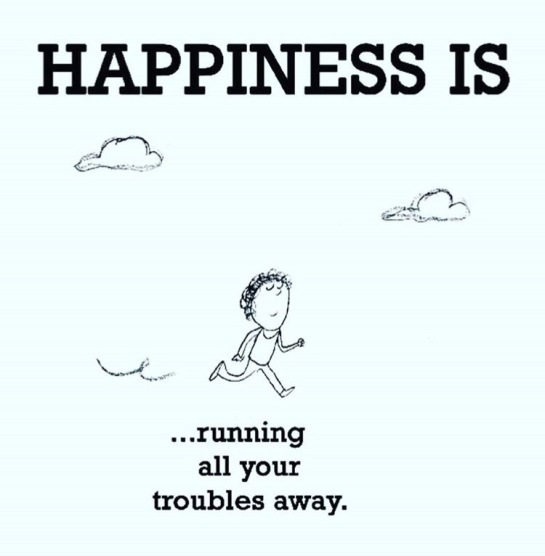 Running is Happiness